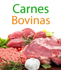 Bovina